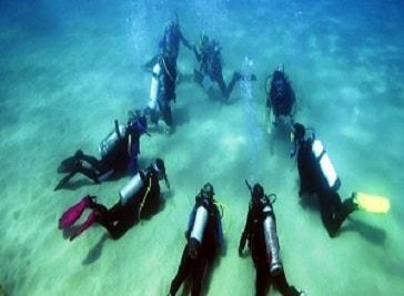 Brighton Diving